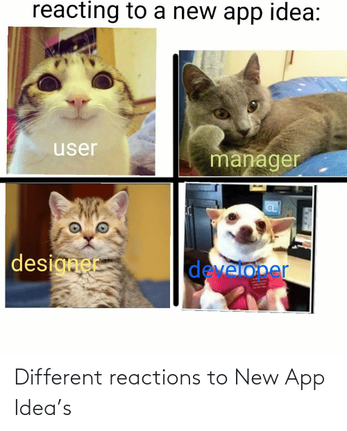 idea: Different reactions to New App Idea's