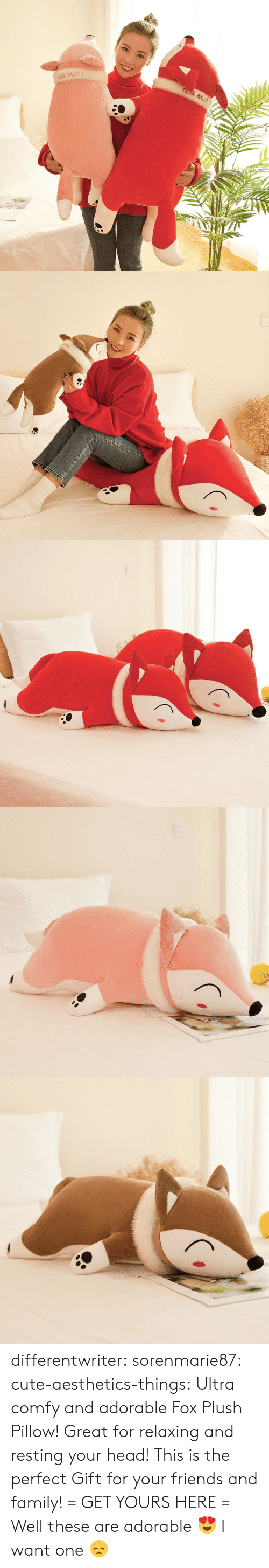 plush: differentwriter:  sorenmarie87:  cute-aesthetics-things:  Ultra comfy and adorable Fox Plush Pillow! Great for relaxing and resting your head! This is the perfect Gift for your friends and family! = GET YOURS HERE =   Well these are adorable 😍  I want one 😞