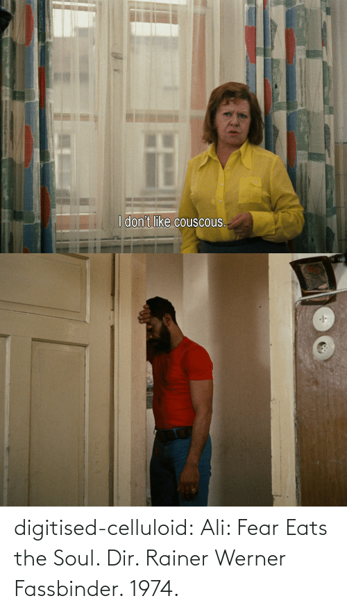 soul: digitised-celluloid:  Ali: Fear Eats the Soul. Dir. Rainer Werner Fassbinder. 1974.
