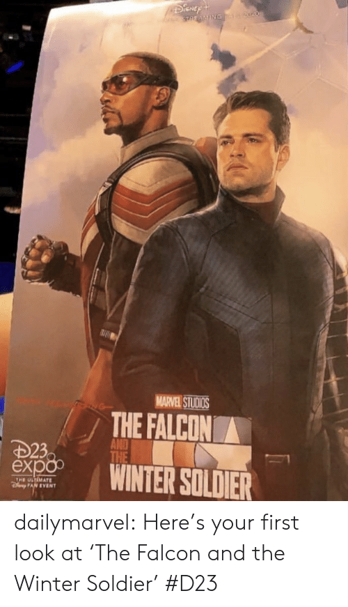 Target, Tumblr, and Winter: DiGnEp  STREAMING 2020  MARVEL STUDIOS  THE FALCON  AND  THE  D23  ёxpo  WINTER SOLDIER  THE ULTIMATE  PAN EVENT dailymarvel:  Here's your first look at 'The Falcon and the Winter Soldier' #D23