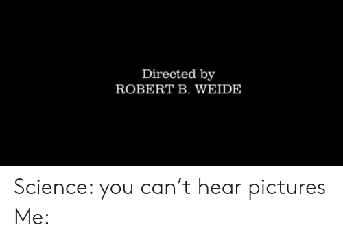 Memes, Pictures, and Science: Directed by  ROBERT B. WEIDE Science: you can't hear pictures Me: