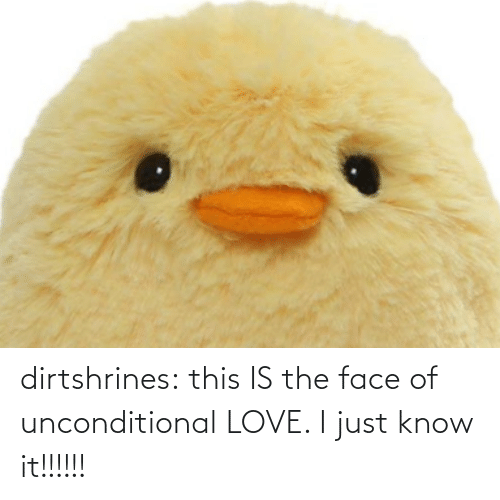 the face: dirtshrines: this IS the face of unconditional LOVE. I just know it!!!!!!