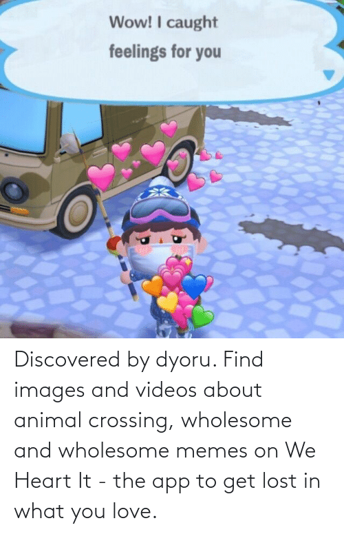 Love, Memes, and Videos: Discovered by dyoru. Find images and videos about animal crossing, wholesome and wholesome memes on We Heart It - the app to get lost in what you love.