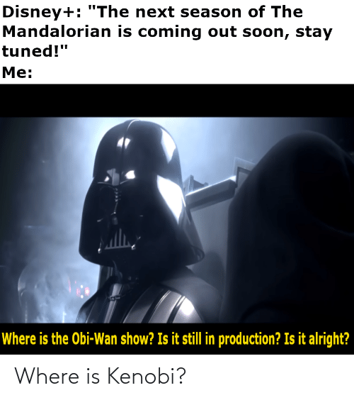 "stay: Disney+: ""The next season of The  Mandalorian is coming out soon, stay  tuned!""  Me:  Where is the Obi-Wan show? Is it still in production? Is it alright? Where is Kenobi?"