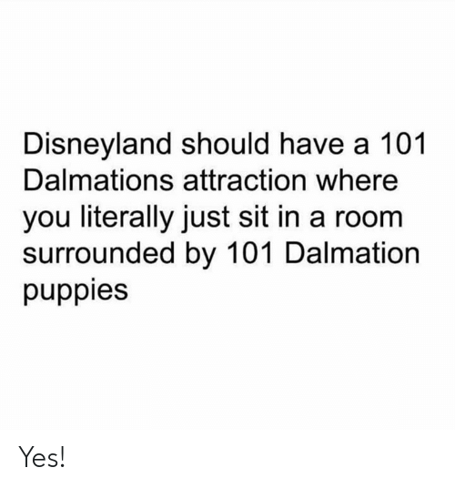 disneyland: Disneyland should have a 101  Dalmations attraction where  you literally just sit in a room  surrounded by 101 Dalmation  puppies Yes!