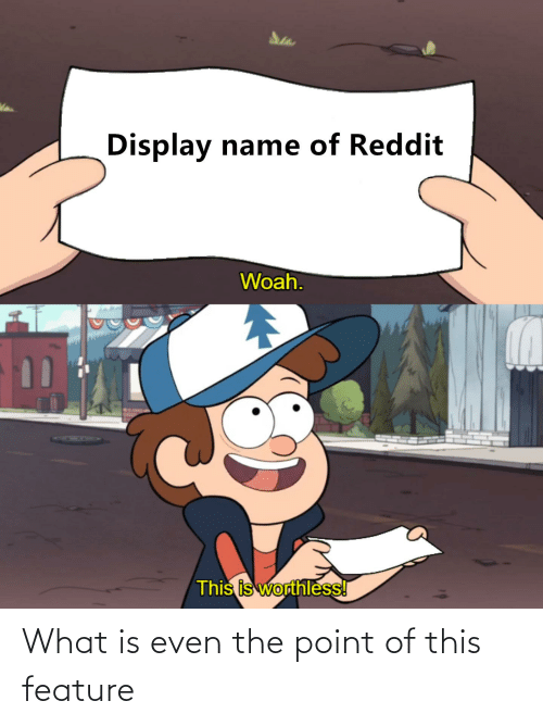 Reddit, What Is, and Dank Memes: Display name of Reddit  Woah.  This is worthless! What is even the point of this feature