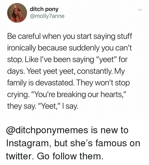 """pony: ditch pony  @molly7anne  Be careful when you start saying stuff  ironically because suddenly you can't  stop. Like I've been saying """"yeet"""" for  days. Yeet yeet yeet, constantly. Vy  family is devastated. I hey won't stop  crying. """"You're breaking our hearts,""""  they say.""""Yeet,"""" I say @ditchponymemes is new to Instagram, but she's famous on twitter. Go follow them."""