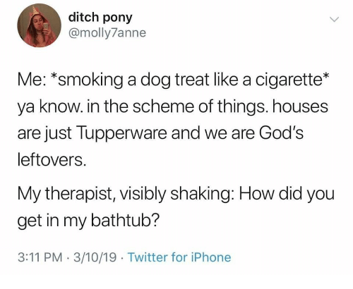 Iphone, Smoking, and Twitter: ditch pony  @molly7anne  Me: *smoking a dog treat like a cigarette*  ya know. in the scheme of things. houses  are just Tupperware and we are God's  leftovers.  My therapist, visibly shaking: How did you  get in my bathtub?  3:11 PM 3/10/19 Twitter for iPhone
