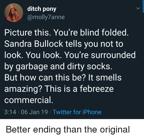 Iphone, Twitter, and Dirty: ditch pony  @molly7anne  Picture this, You're blind foldeg  Sandra Bullock tells you not to  ook, You look. You're surrounded  by garbage and dirty socks  But how can this be? It smells  amazing? This is a febreeze  commercia  3:14 06 Jan 19 Twitter for iPhone Better ending than the original