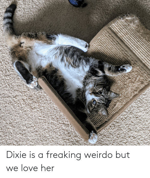 freaking: Dixie is a freaking weirdo but we love her