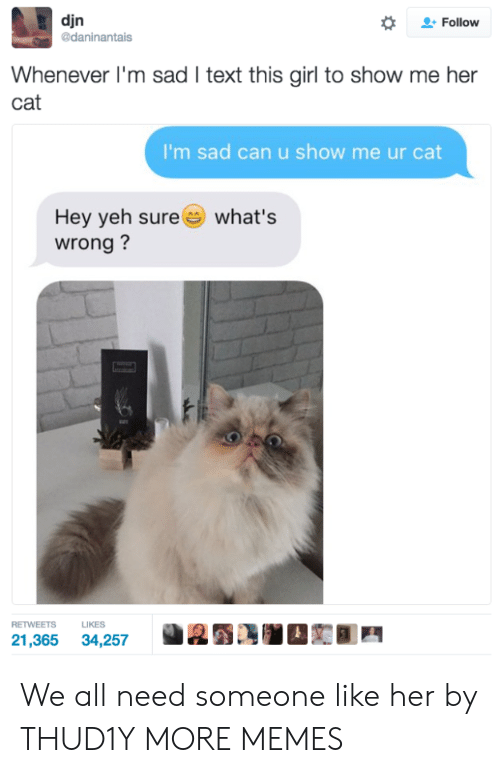 Yeh: djn  daninantais  *  으. Follow  Whenever I'm sad I text this girl to show me her  cat  I'm sad can u show me ur cat  Hey yeh sure  wrong?  what's  RETWEETS LIKES  21,365 34,257 We all need someone like her by THUD1Y MORE MEMES
