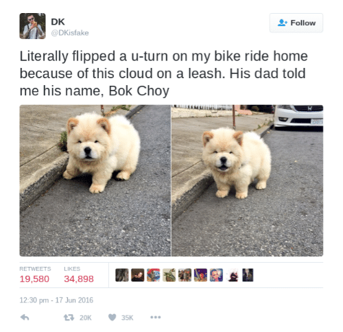 Dad, Cloud, and Home: DK  @DKisfake  Follow  Literally flipped a u-turn on my bike ride home  because of this cloud on a leash. His dad told  me his name, Bok Choy  RETWEETS L  LIKES  19,580 34,898  *I  12:30 pm -17 Jun 2016  20K35K