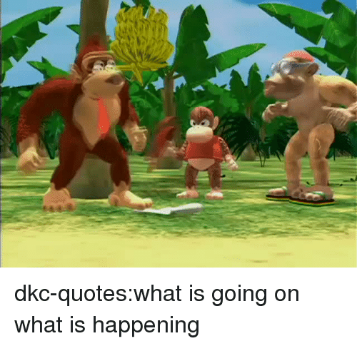what is going on: dkc-quotes:what is going on what is happening