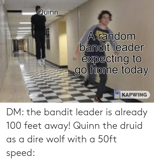 dire wolf: DM: the bandit leader is already 100 feet away! Quinn the druid as a dire wolf with a 50ft speed: