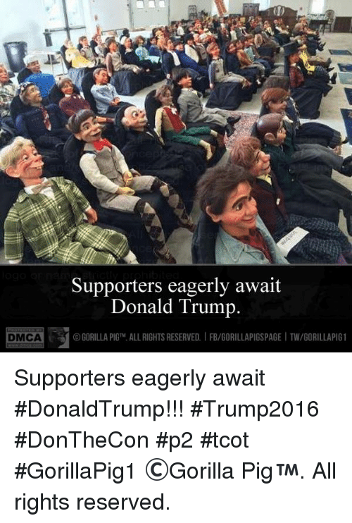 Donald Trump, Memes, and Trump: DMCA Supporters eagerly await  Donald Trump.  GORILLA PIGTM. ALLRIGHTS RESERVED. IFB/GORILLAPIGSPAGE ITW/GORILLAPIG 1 Supporters eagerly await #DonaldTrump!!!  #Trump2016  #DonTheCon  #p2  #tcot  #GorillaPig1 ©Gorilla Pig™. All rights reserved.