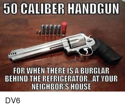 Burglarer: DO CALIBER HANDGUN  FOR WHEN THERE IS A BURGLAR  BEHIND THE REFRIGERATOR... AT VOUR  NEIGHBORS HOUSE DV6