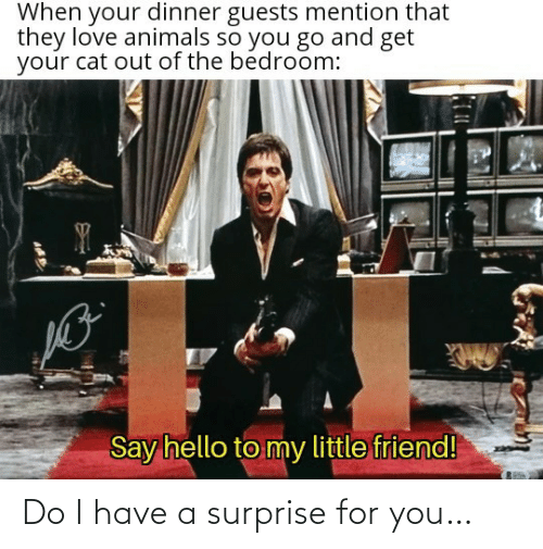 surprise: Do I have a surprise for you…