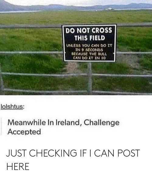 Ireland: DO NOT CROSS  THIS FIELD  UNLESS YOU CAN DO IT  IN 9 SECONDS  BECAUSE THE DULL  CAN DOIT IN 10  lolshtus:  Meanwhile In Ireland, Challenge  Accepted JUST CHECKING IF I CAN POST HERE