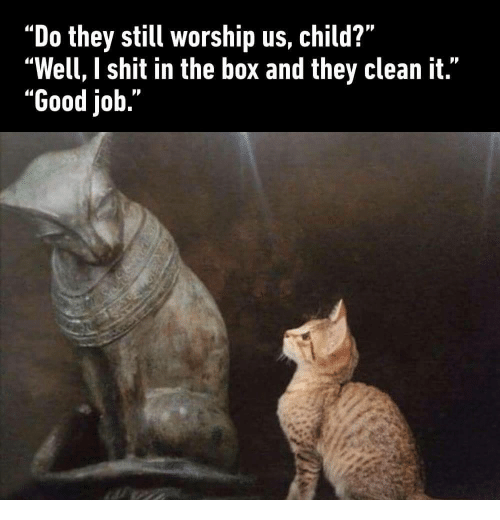 "Shit, Good, and Job: ""Do they still worship us, child?""  ""Well, I shit in the box and they clean it.""  ""Good job."""