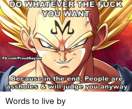 Whatevs: DO WHATEVER THE F  YOU AWANNT  Fb.com/ProudSayian  Because in the end, People are  assholes Wim judge you anyway Words to live by