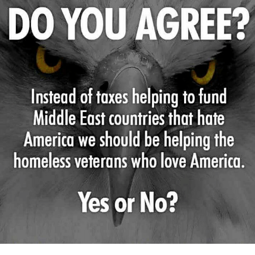yes or no: DO YOU AGREE?  Instead of taxes helping to fund  Middle East countries that hate  America we should be helping the  homeless veterans who love America,  Yes or No?