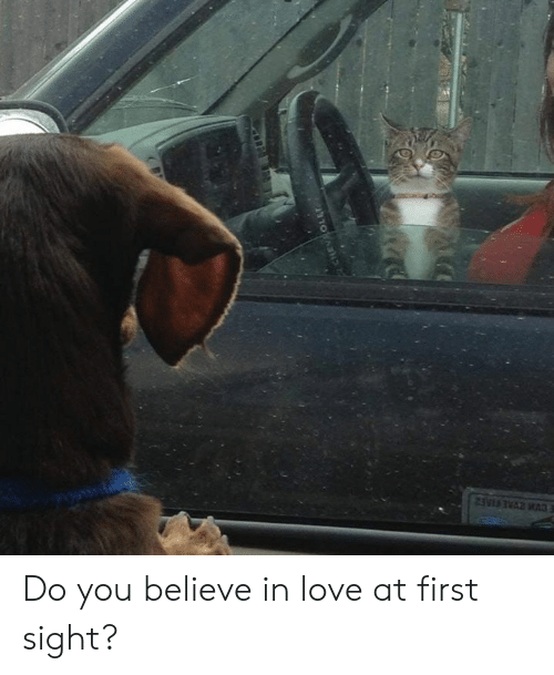love at first sight: Do you believe in love at first sight?