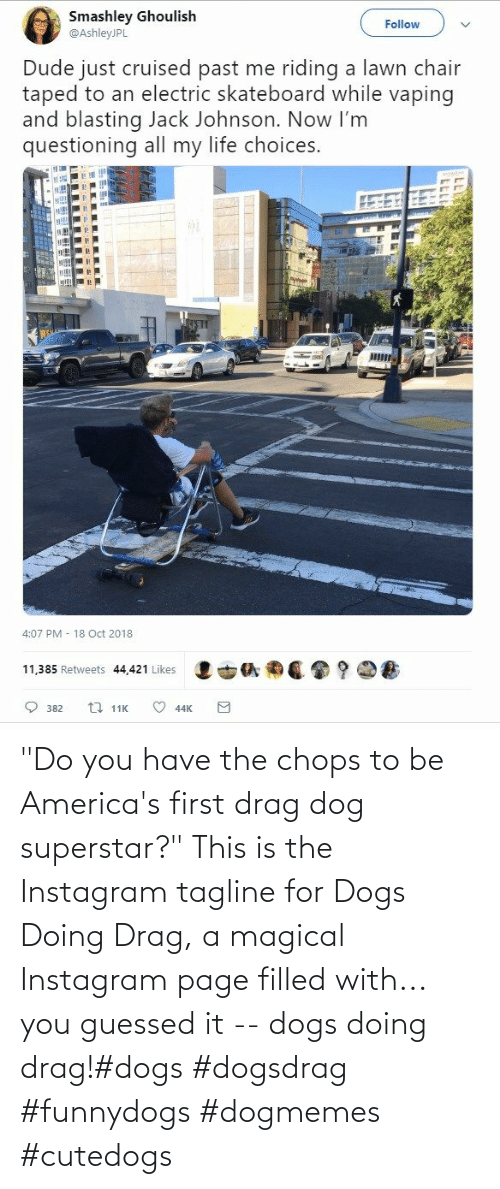 "magical: ""Do you have the chops to be America's first drag dog superstar?"" This is the Instagram tagline for Dogs Doing Drag, a magical Instagram page filled with... you guessed it -- dogs doing drag!#dogs #dogsdrag #funnydogs #dogmemes #cutedogs"