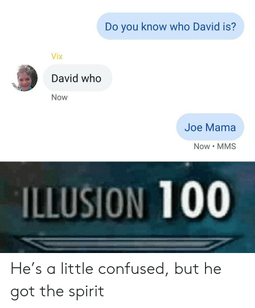 Confused, Spirit, and Got: Do you know who David is?  Vix  David who  Now  Joe Mama  Now MMS  ILLUSION 100 He's a little confused, but he got the spirit
