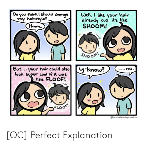 Cool, Hair, and Change: Do you thinkI should change  my hairstyle?  (Hmm..  Well, I like your hair  already  SHOOM!  cuz it's like  SHOOM!  But... your hair could also  (ook super cool if it was  (ike FLOOF!  y'know?  ...no.  FLOOF  @acookieadaycomics [OC] Perfect Explanation
