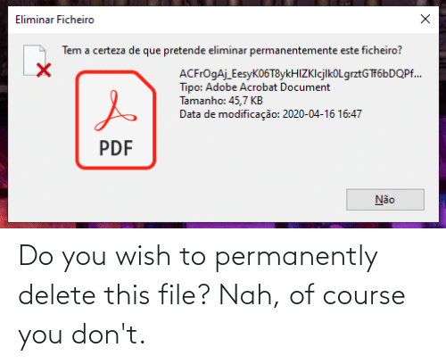 Permanently Delete: Do you wish to permanently delete this file? Nah, of course you don't.