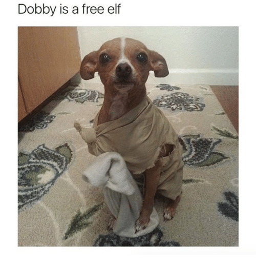 Elf, Free, and Dobby Is a Free Elf: Dobby is a free elf