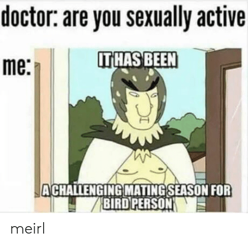 Sexually: doctor: are you sexually active  IT HAS BEEN  me:  ACHALLENGING MATING SEASON FOR  BIRD PERSON meirl
