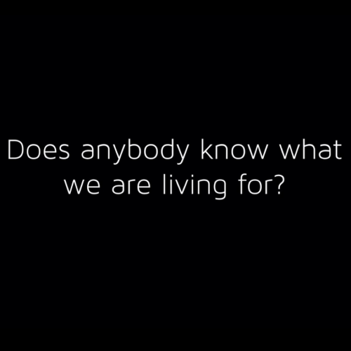 Living, What, and For: Does anybody know what  we are living for?