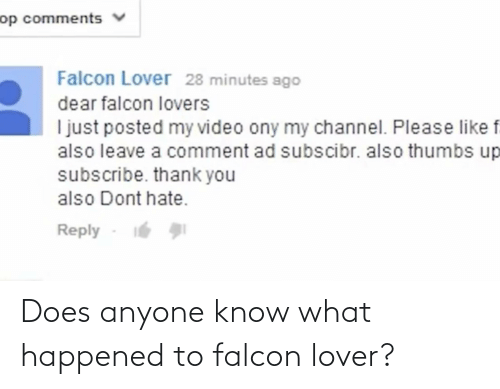 lover: Does anyone know what happened to falcon lover?