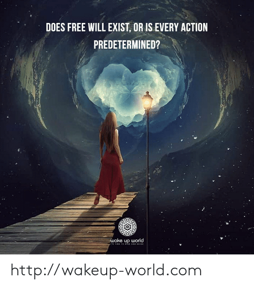 Free, Http, and Time: DOES FREE WILL EXIST, OR IS EVERY ACTION  PREDETERMINED?  wake up world  TIME TO ise AND HINE http://wakeup-world.com