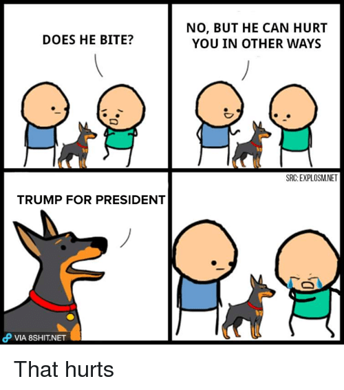 Trump For President: DOES HE BITE?  TRUMP FOR PRESIDENT  dP VIA 8SHIT.NET  NO, BUT HE CAN HURT  YOU IN OTHER WAYS  SRC: EXPLOSMNET That hurts