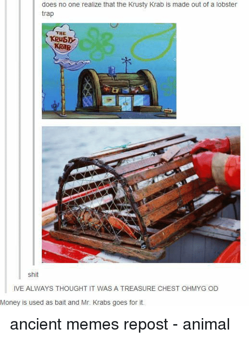 Ancient Memes: does no one realize that the Krusty Krab is made out of a lobster  trap  THE  KRUST  KRAB  shit  IVE ALWAYS THOUGHT IT WAS A TREASURE CHEST OHMYG OD  Money is used as bait and Mr. Krabs goes for it. ancient memes repost - animal