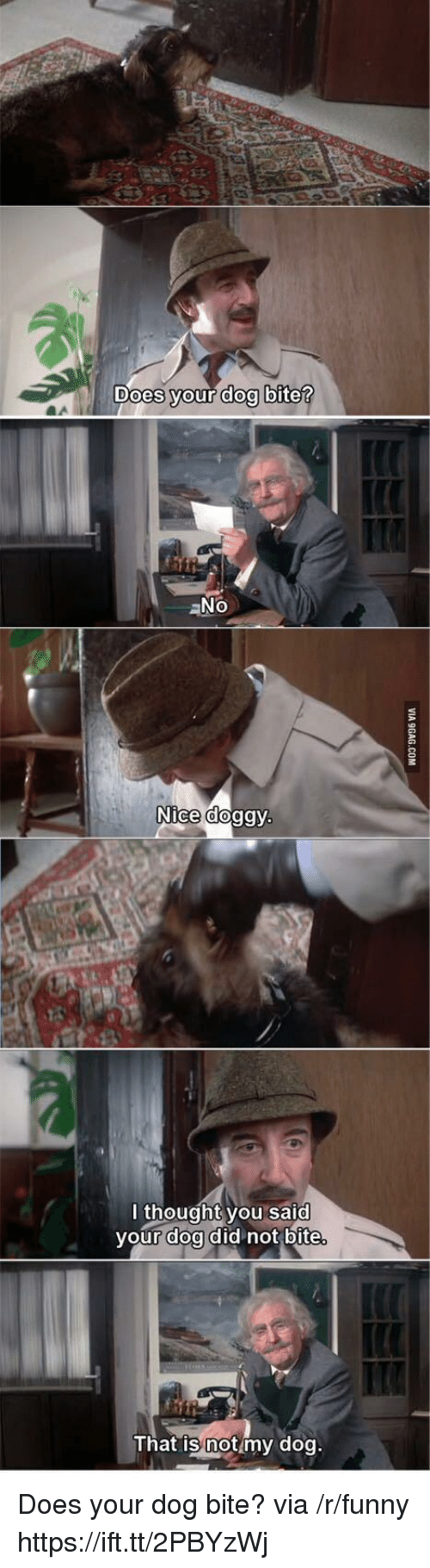 doa: Does vour doo bite  aNo  Nice doggy  l thought you said  your doa did not bite  That is notmy dog Does your dog bite? via /r/funny https://ift.tt/2PBYzWj