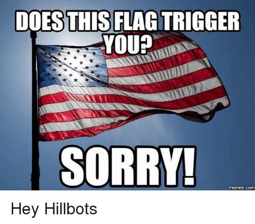 Sorry Memes: DOESTHIS FLAGTRIGGER  YOU?  SORRY!  memes.COmT