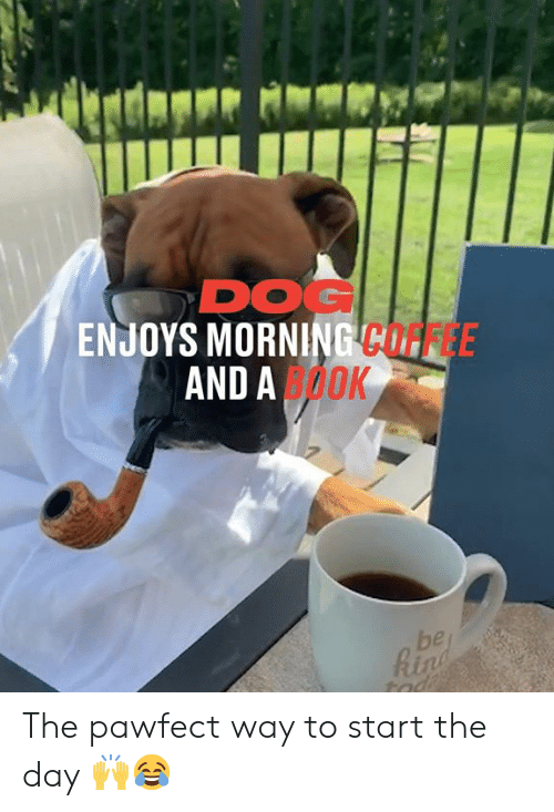 rin: DOG  ENJOYS MORNING COFFEE  AND AOOK  be  Rin  tad The pawfect way to start the day 🙌😂