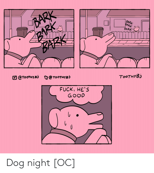 night: Dog night [OC]