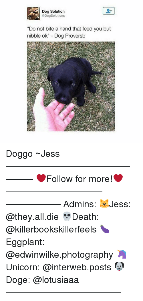 "interweb: Dog Solution  @Dog Solutions  ""Do not bite a hand that feed you but  nibble ok"" Dog Proversb Doggo ~Jess —————————————–——— ❤️Follow for more!❤️ ——————————–—————— Admins: 🐱Jess: @they.all.die 💀Death: @killerbookskillerfeels 🍆Eggplant: @edwinwilke.photography 🦄Unicorn: @interweb.posts 🐶Doge: @lotusiaaa ——————————–——"