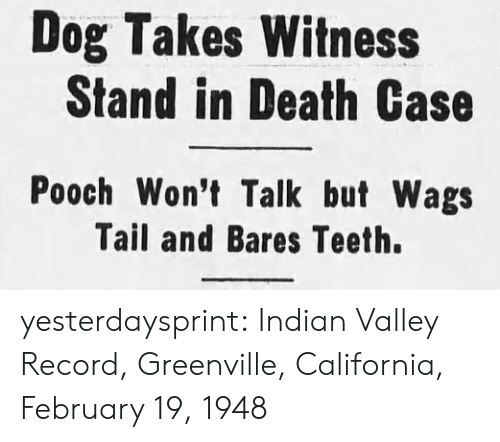 pooch: Dog Takes Witness  Stand in Death Case  Pooch Won't Talk but Wags  Tail and Bares Teeth. yesterdaysprint: Indian Valley Record, Greenville, California, February 19, 1948