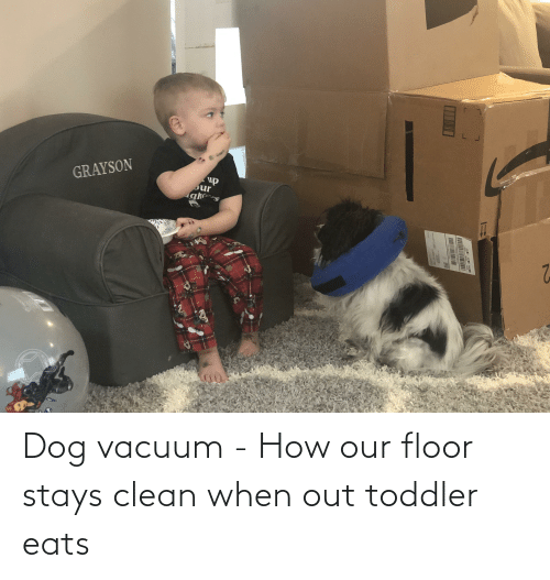 toddler: Dog vacuum - How our floor stays clean when out toddler eats