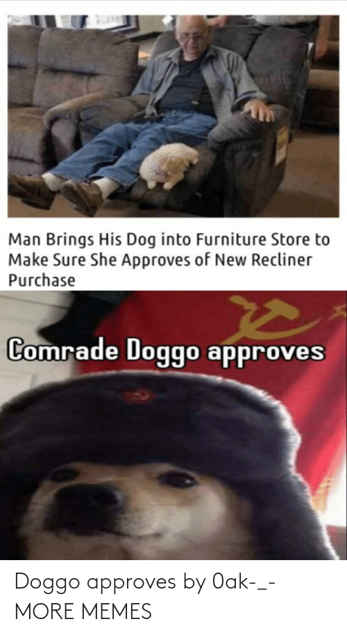 Approves: Doggo approves by 0ak-_- MORE MEMES