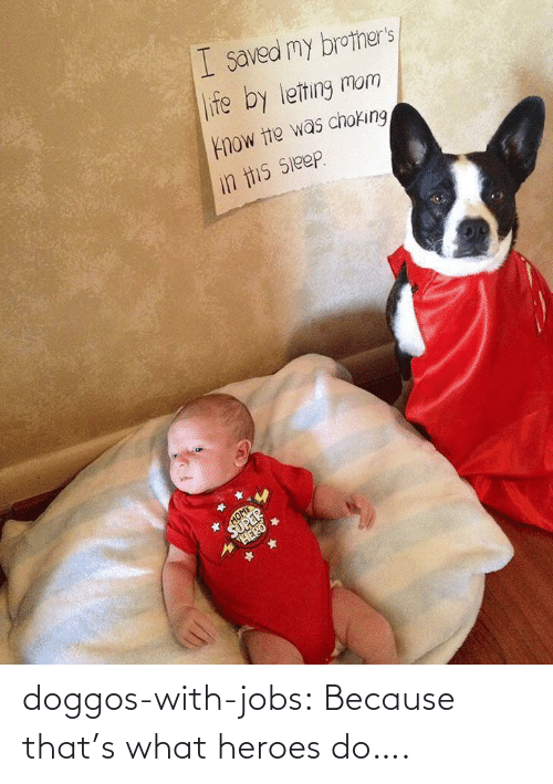 Heroes: doggos-with-jobs:  Because that's what heroes do….