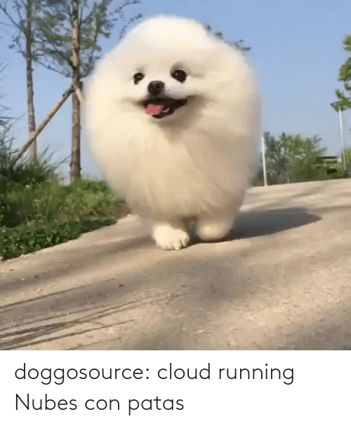 Cloud: doggosource: cloud running   Nubes con patas