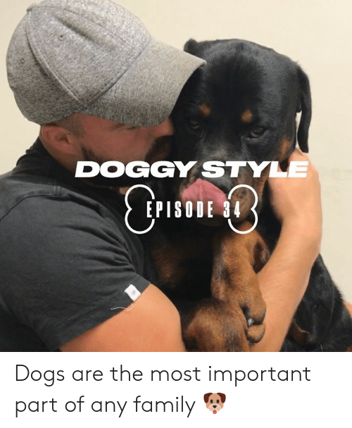 doggy: DOGGY STYLE  CTIE  EPISODE 34 Dogs are the most important part of any family 🐶