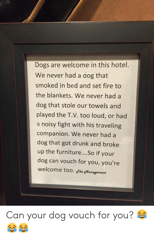 Dogs, Drunk, and Fire: Dogs are welcome in this hotel.  We never had a dog that  smoked in bed and set fire to  the blankets. We never had a  dog that stole our towels and  played the T.V. too loud, or had  a noisy fight with his traveling  companion. We never had a  dog that got drunk and broke  up the furniture... .So if your  dog can vouch for you, you're  welcome too. dhe dtanagement Can your dog vouch for you? 😂😂😂