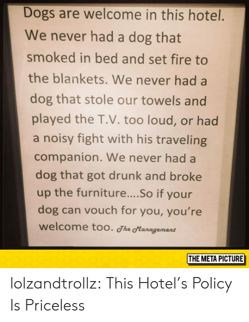 Dogs, Drunk, and Fire: Dogs are welcome in this hotel.  We never had a dog that  smoked in bed and set fire to  the blankets. We never had a  dog that stole our towels and  played the T.V. too loud, or had  a noisy fight with his traveling  companion. We never had a  dog that got drunk and broke  up the furniture....So if your  dog can vouch for you, you're  welcome too. The Hanagement  THE META PICTURE lolzandtrollz:  This Hotel's Policy Is Priceless